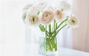 White Flowers - Flowers Wallpaper (33698300) - Fanpop
