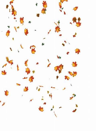 Leaves Falling Autumn Glitter Gifs Nature Graphics