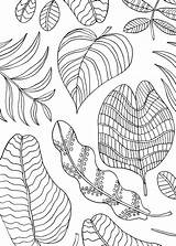 Mindfulness Coloring Pages Leaves Nature Sheets Printable Activities Colouring Animal Leaf Fall Whitesbelfast Workman sketch template