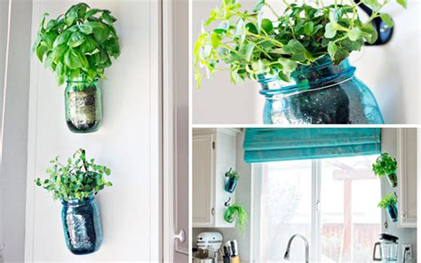 ideas originales  decorar la cocina  plantas