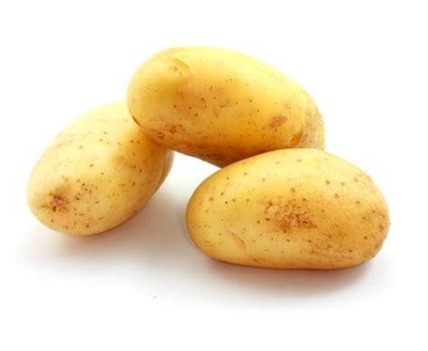 pomme de terre en chambre gratin de pommes de terre