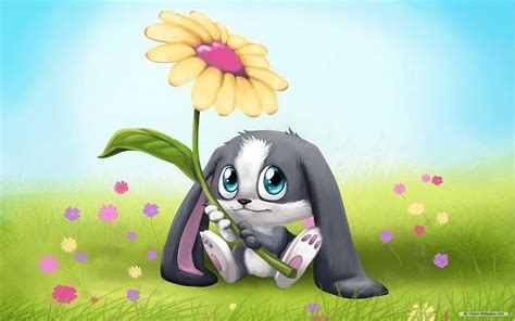 Animated Bunny Wallpapers - bunny wallpaper pencil and in color bunny