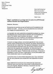 Exemple Lettre De Motivation Bts : 14 exemple lettre de motivation bts nrc modele cv ~ Medecine-chirurgie-esthetiques.com Avis de Voitures