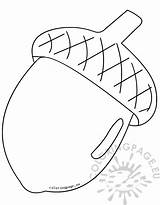 Acorn Clipart Coloring Pages Print Coloringpage Eu sketch template