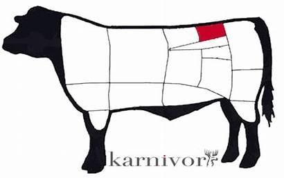 Rostas Beef Cattle Grillad Which Karnivor Sitter