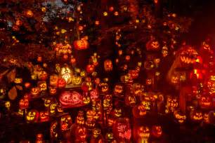 Pumpkin Patch Trail Lubbock by Jack O Lantern Spectacular Louisville