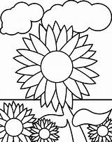 Coloring Garden Sunflower Sunflowers Pages Clipart Clip Vegetable Rocks Library Colornimbus sketch template