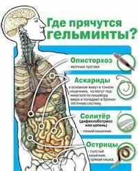 Головная боль боли в суставах болью в мышцах