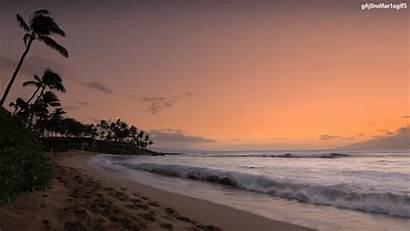 Summer Beach Gifs Giphy Sunset Animated Amor