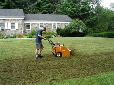 seeding a lawn grass seed archives seeders for sale seeders for sale