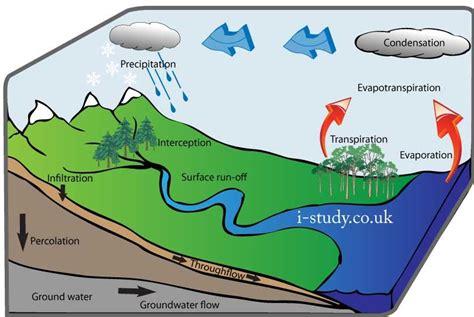 igcse geography water cycle hydrological cycle useful