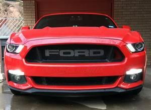 Ford Mustang Gt 2015 : 2015 2017 ford mustang gt mesh grill insert kit by customcargrills ~ Medecine-chirurgie-esthetiques.com Avis de Voitures