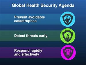 Translating the Global Health Security Goals in Nigeria ...