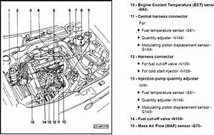 2010 Jetta Diesel Turbo Diagram