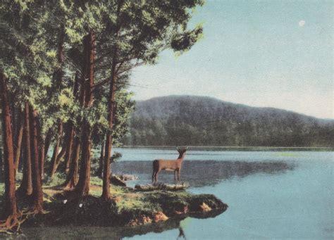 adirondack mountains  york deer lake vintage