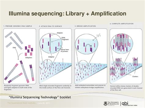 Next Sequencing Illumina Introduction To Second Generation Sequencing