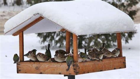 wood bird feeder  design ideas  diy garden decorations