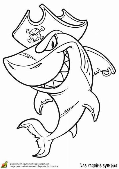 Pirate Requin Coloring Shark Coloriage Dessin Mermaid