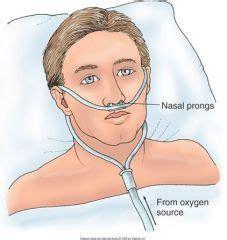 Medical Equipment - Oxy Nasal Canula Wholesale Trader from