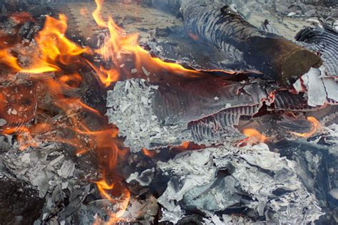 Fire Burning Free Stock Photo - Public Domain Pictures