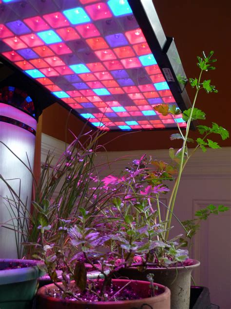 value of led grow lights dabs magazine