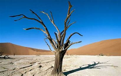 Africa Desert Wallpapers Namibia Namib Nature Park