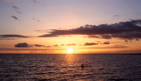 Napali Coast Boat Tour Sunset by Napali Sunset Cruises Blue Dolphin Charters