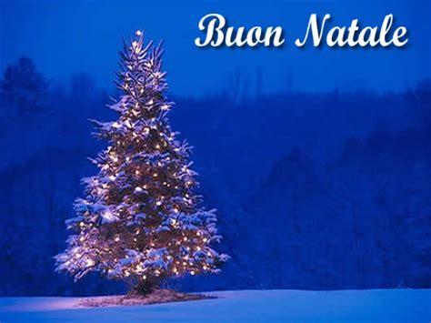 Albero Illuminato by Immagini Natalizie Albero Di Natale Illuminato