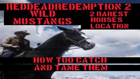 rdr2 wild horses tame rarest
