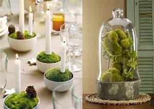 Frühlingsdeko Im Glas : fr hlingsdeko moos kerzenst nder kugeln glasglocke moos pinterest dekoration ~ Orissabook.com Haus und Dekorationen