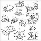 Coloring Insect Insects Pdf Bugs Colouring Printable Preschool Sheets Adult Bee Getdrawings Ladybug Colorir Sheapeterson Páginas Para Zini Artigo Animal sketch template