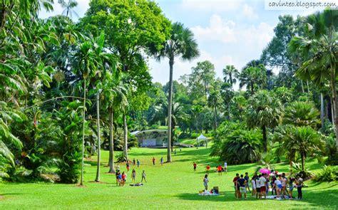 singapore botanic gardens entree kibbles national orchid garden definitely for
