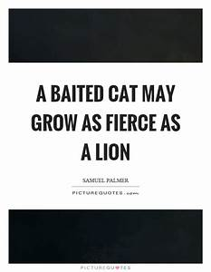 A baited cat may grow as fierce as a lion   Picture Quotes
