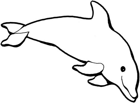 Coloring Templates Printable by Dolphin Template Animal Templates Free Premium Templates