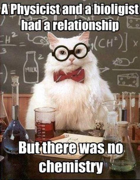 Science Birthday Meme - 9743b91731cabac9c4986bd0fcafa4ea jpg 640 215 824 chemistry cat pinterest chemistry science