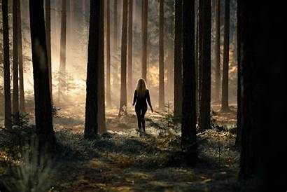 Alone Forest Woods Hdwallpaperfx Mysterious Iphone
