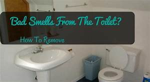 How to remove bad smells from the toilet cleaninsider for Bathroom smells bad
