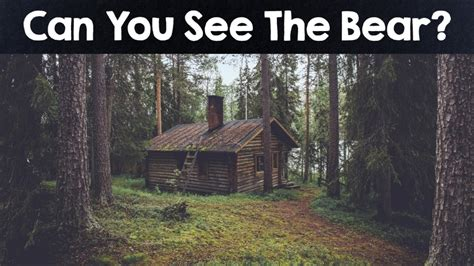 Nobody Can See All The Hidden Animals । Optical Illusions