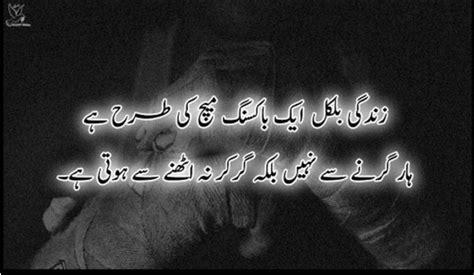 interesting facts  life  urdu top pakistan