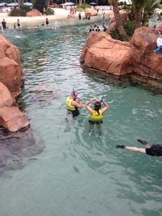 1000 images about discovery cove fl on