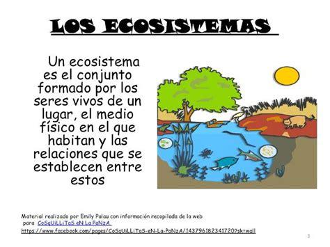 los ecosistemas con actividades medio ambiente ciencias naturales 5 ciencias