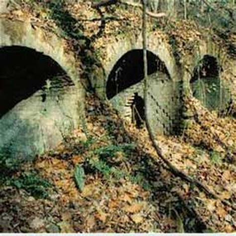 red ash rush run layland   hawks nest tunnel