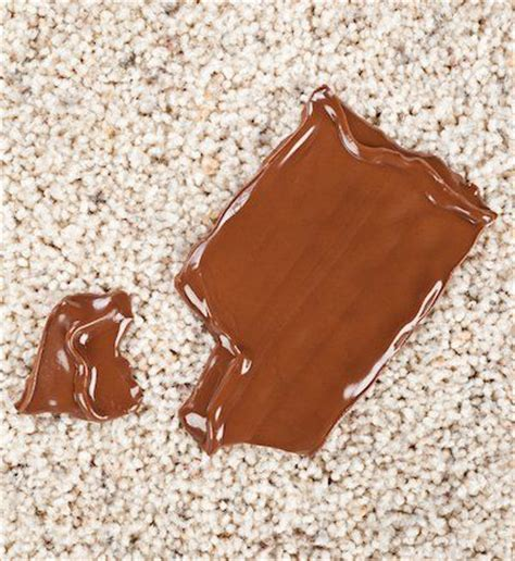 Remove Chocolate Stain From Upholstery by 25 Best Ideas About Removing Chocolate Stains On