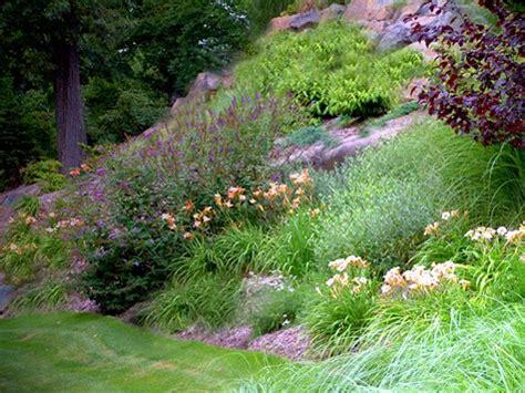 landscape slope landscaping a slope joy studio design gallery best design