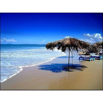 Things that Make Goa a Paradise for TouristsHoodaki