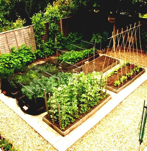 vegetable garden design diy small raised vegetable garden along black wood and