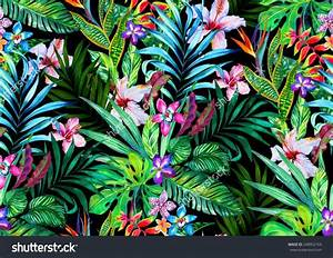 41 best Tropical images on Pinterest   Tropical beaches ...