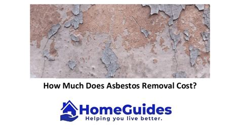 asbestos removal cost guide