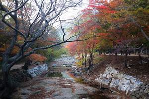Scenery by the Brook, South Korea