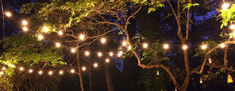 in summer trees patio string lights and bulbs Lights